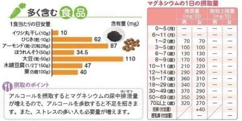 多い マグネシウム 食品 の
