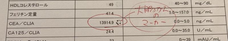 800 腫瘍 マーカー 数値