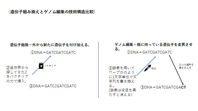 遺伝子 違い 組み換え 編集 ゲノム 【専門家が解説】ゲノム編集とは? 遺伝子組み換えとの違いは?