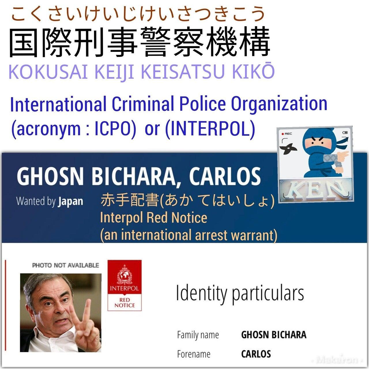国際刑事警察機構 (こくさいけいじけいさつきこう) ICPO or INTERPOL ...