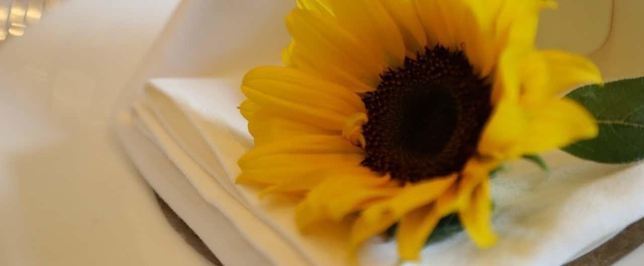 みけちゃん結婚式_170610_0147
