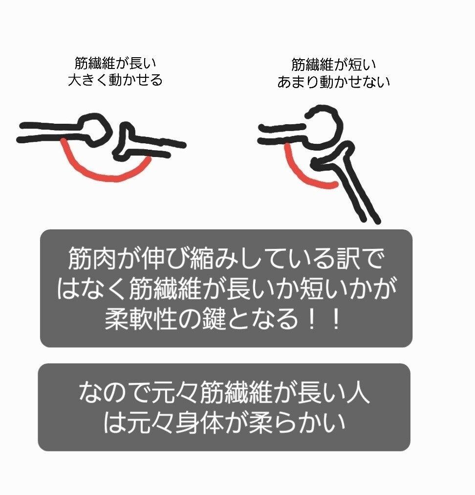 関節 筋肉
