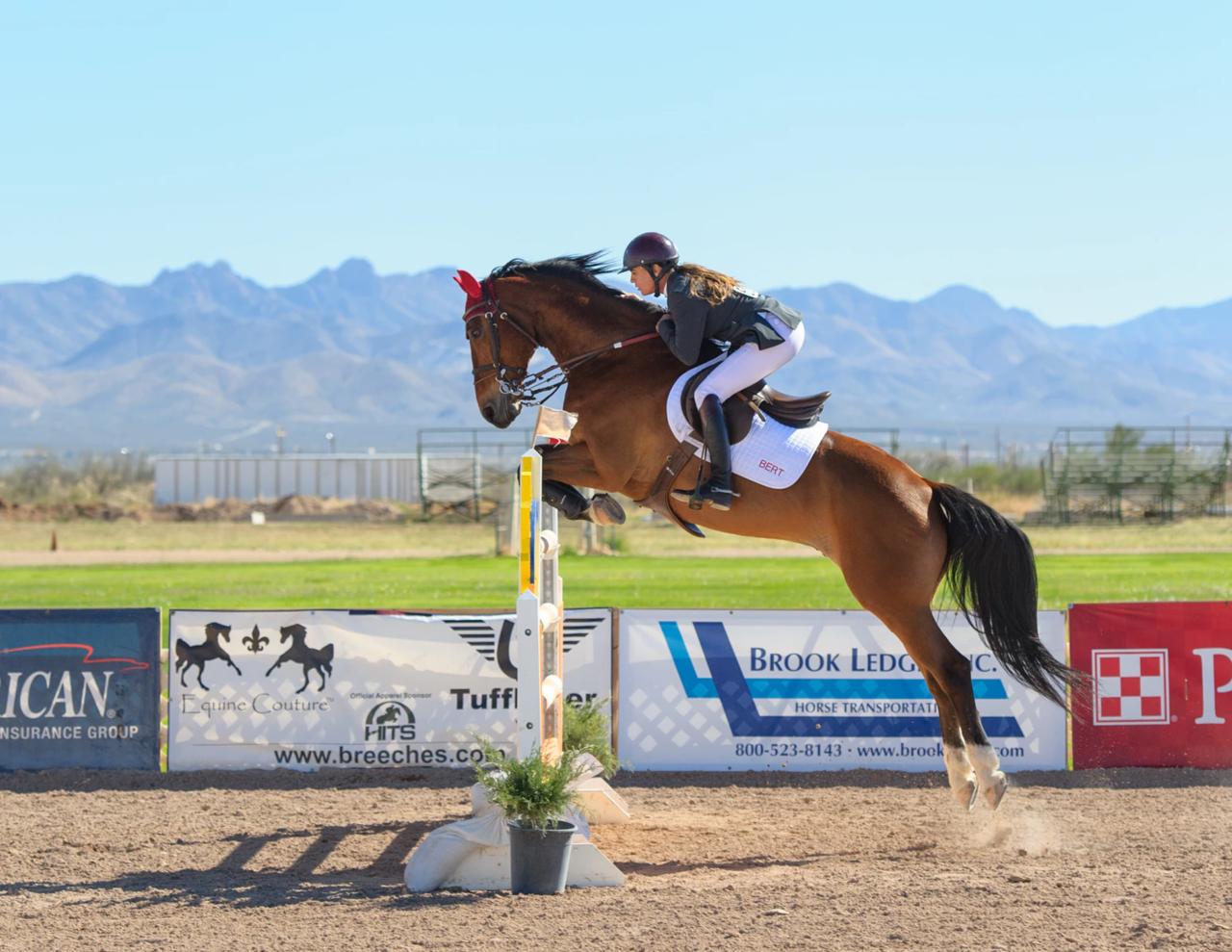 乗馬 女性 障害物競争