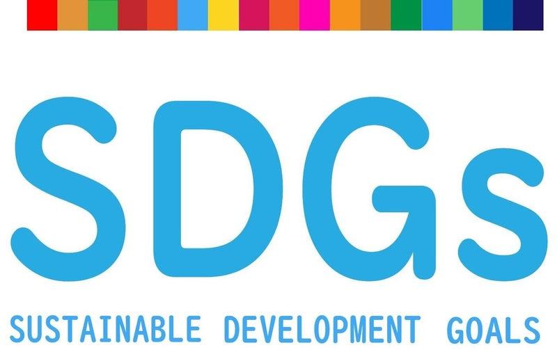 新年度はSDGs教育を始めよう!