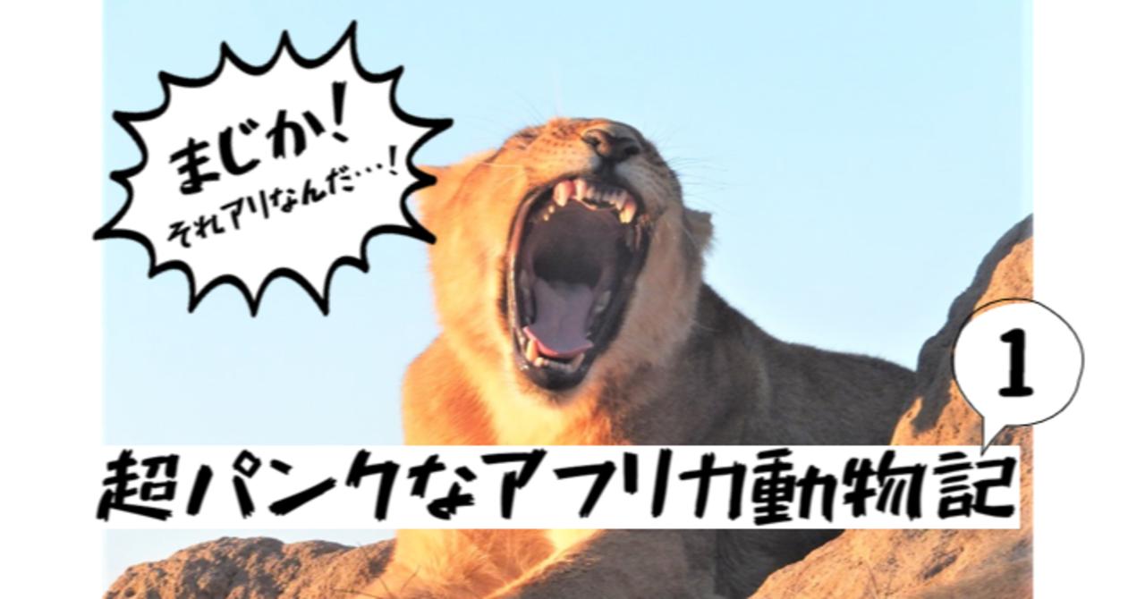 まじか!それアリなんだ…!~元・野生動物研究室の井口もびっくり、超パンクなアフリカ動物記 ①~