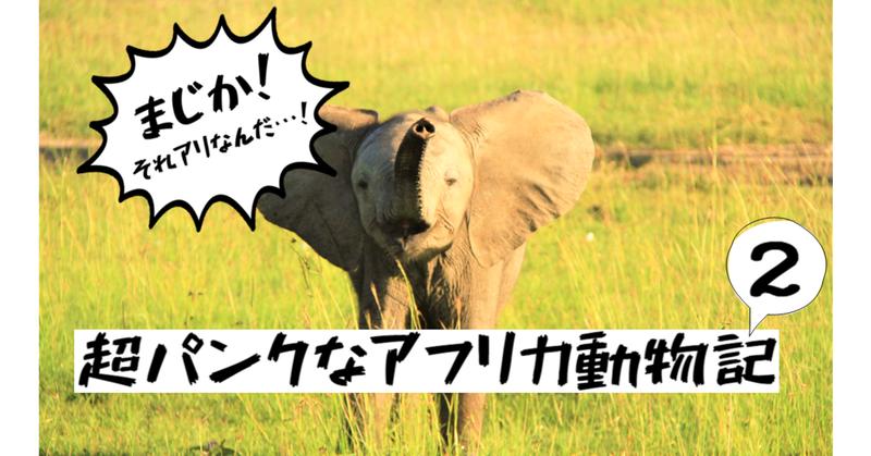 まじか!それアリなんだ…!~元・野生動物研究室の井口もびっくり、超パンクなアフリカ動物記 ②~
