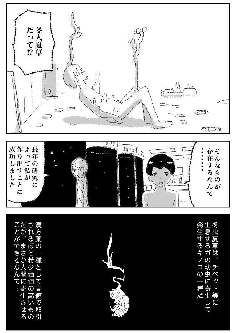 冬虫夏草0084