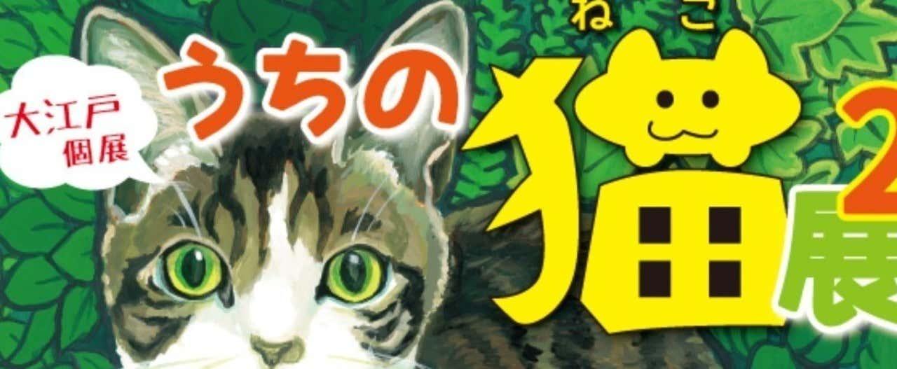 猫展2DM通信面バナー