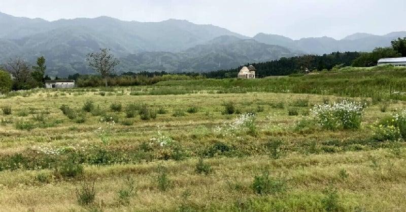 富山県南砺市の畑にグランピング施設をつくります