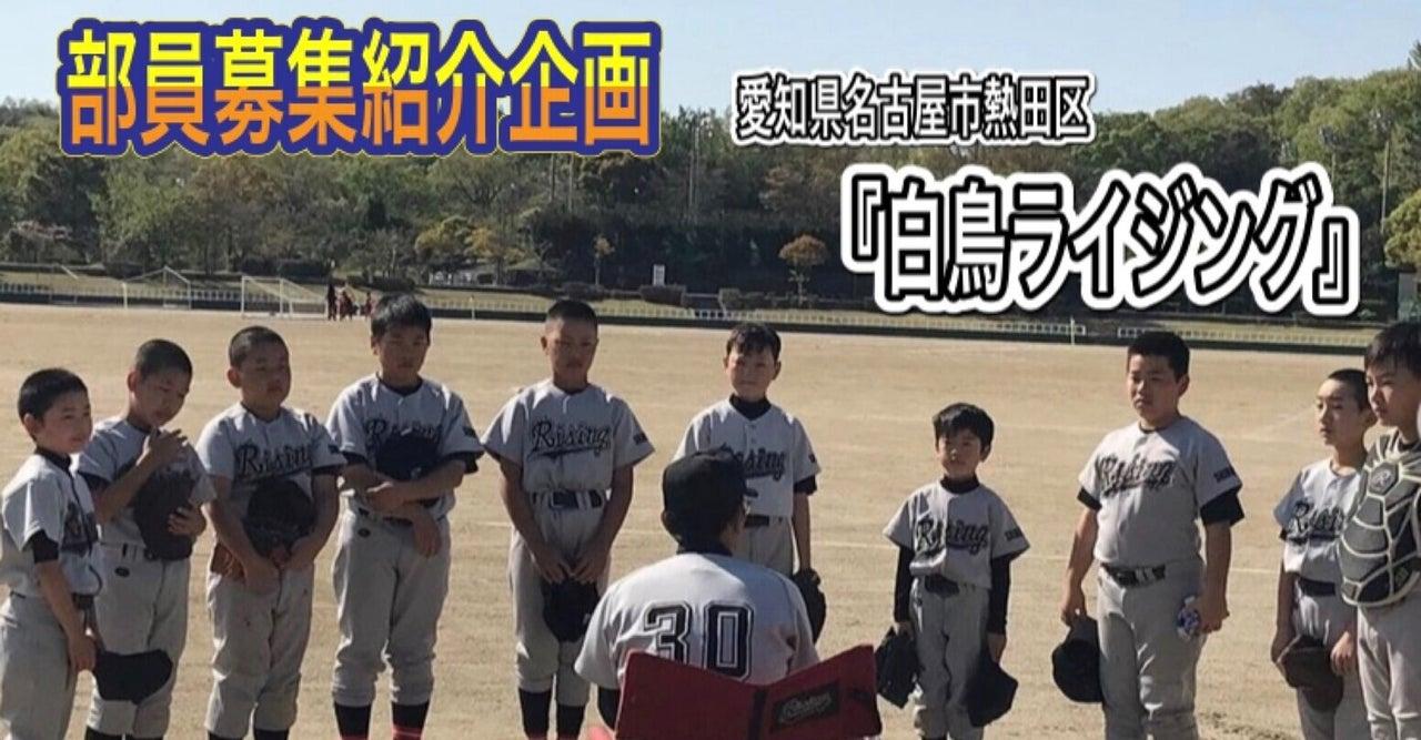 【部員募集紹介〜愛知県〜】小学生軟式野球