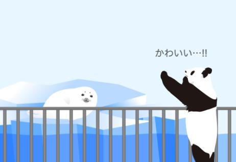 アザラシ赤ちゃんとmaimaiさん