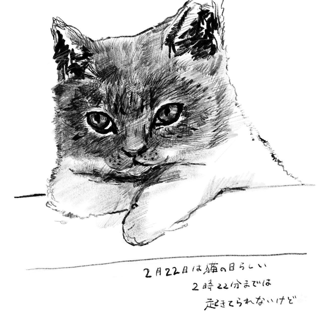 猫の日_20180222