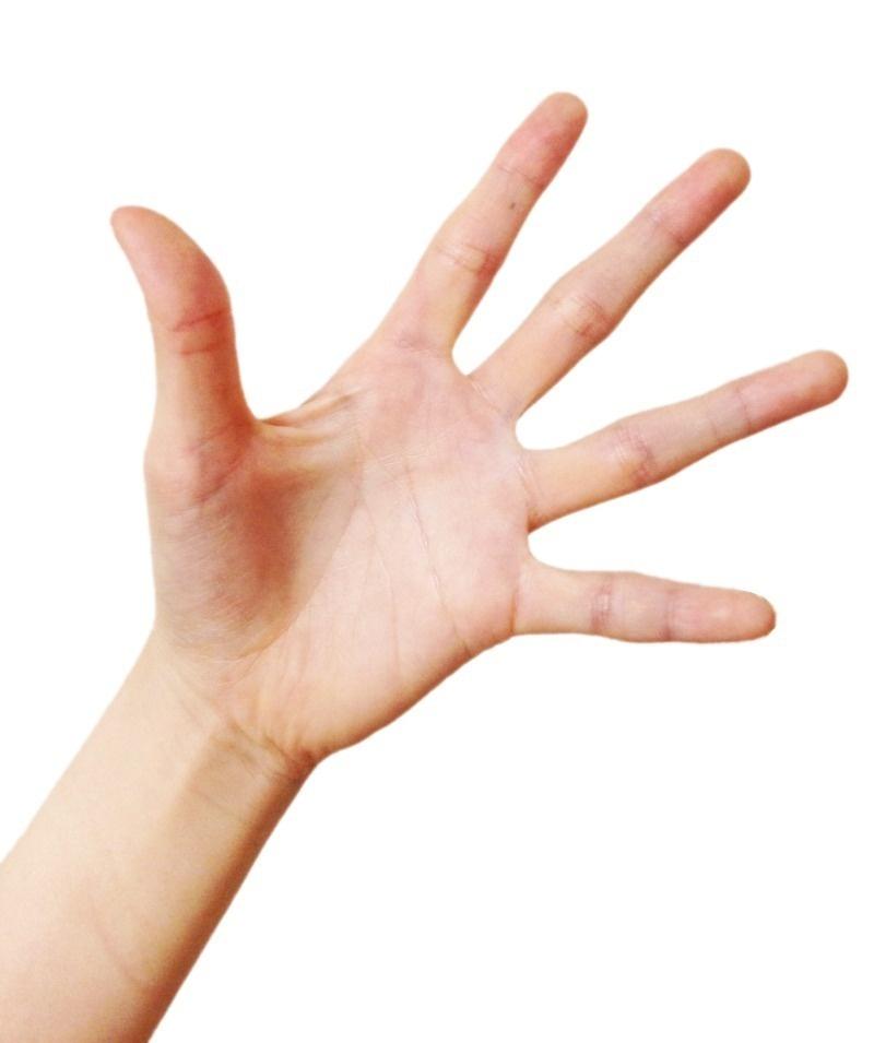 手の素材(模写用)|モリシタアイミ|note