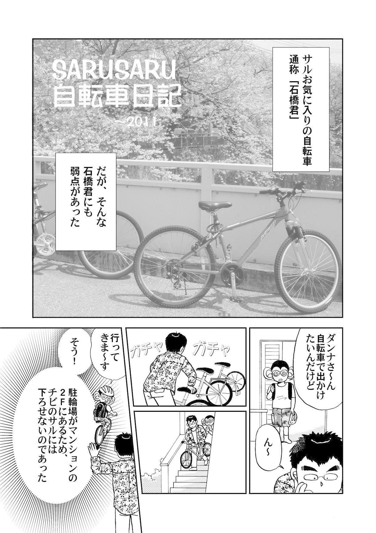 自転車日記2011_P1