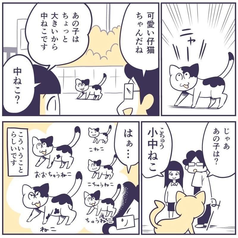 _日記マンガ86