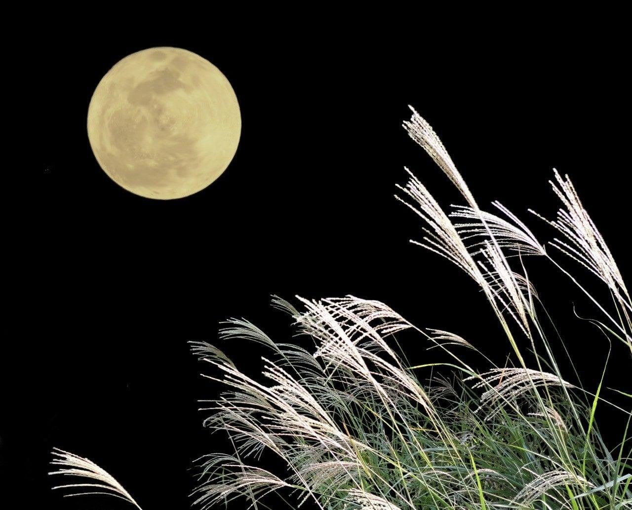 たる へ も の 望月 思ふ と を 欠け と 思 こと ば なし 世 わが ぞ ば この世