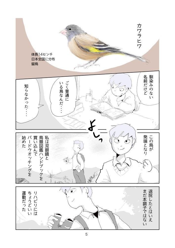 16話-小鳥たちの真実5